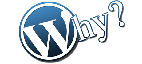Reasons to Use Multifunctional Wordpress